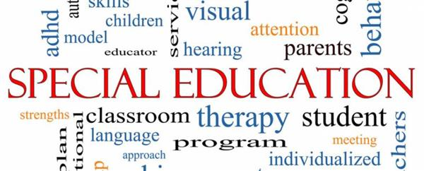 Special Educational Needs (SEN)